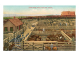 Union Stockyards, Portland, Oregon Prints