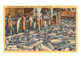 Salmon Cannery, Columbia River, Oregon Posters