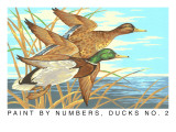Paint by Numbers, Ducks Number Two Posters