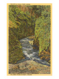 Eagle Creek Gorge, Columbia River, Oregon Posters