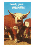 Howdy from Oklahoma, Hereford Steer Posters