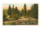Washington Park, Portland, Oregon Poster