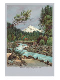 Creek with Mt. Hood in Background, Oregon Poster