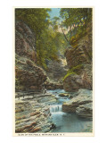 Glen of the Pools, Watkins Glen, New York Art