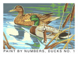 Paint by Numbers, Ducks Number One Art