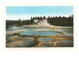 Castle Well and Cone, Yellowstone Park Prints