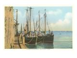 Fishing Schooners, Nantucket, Massachusetts Art
