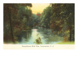 Susquehanna River, Cooperstown, New York Posters