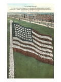 Living Flag at Naval Training Station, Illinois Prints