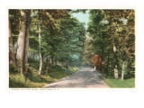 Sleepy Hollow Road, Tarrytown, New York Posters