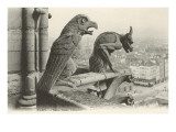 Gargoyles at Notre Dame, Paris Prints