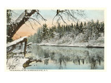Saranac River, Adirondack Mountains, New York Posters