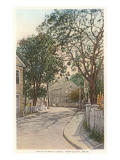 Union Street Curve, Nantucket, Massachusetts Print