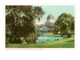 Central Park, Temple Beth-El, New York Prints