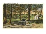 Spangler's Spring, Gettysburg, Pennsylvania Posters