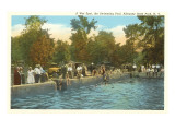 Swimming Pool, Allegany State Park, New York Posters
