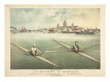 Single Rowers Posters