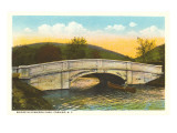 Dennison Park Bridge, Corning, New York Print