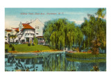 Willow Pond, Rochester, New York Posters