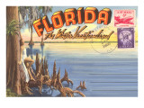Postcard Folder, Florida Prints