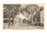 Center Street, Nantucket, Massachusetts Poster