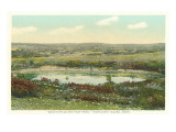 Saul's Hills, Foot Pond, Nantucket, Massachusetts Prints