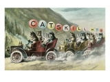Cats in Cars, Catskill Mountains, New York Prints