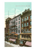 Mott Street, Chinatown, New York City Print