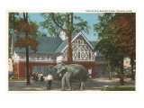 Zoo, Walbridge Park, Toledo, Ohio Posters