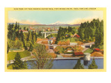 Mt. Hood, City Park, Portland, Oregon Print