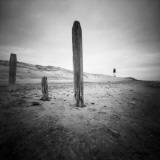 Seacloud Fotografisk tryk af Craig Roberts