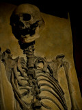 Skeleton Photographic Print by Nathan Wright
