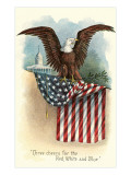 Capitol, Eagle and Flag Print
