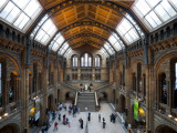 UK, Enlgland, London, South Kensington, Natural History Museum, the Central Hall Photographic Print by Alan Copson