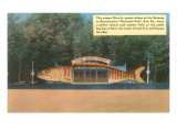 Big Fish Diner, Erie, Pennsylvania Posters