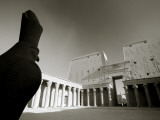 Egypt, Edfu, Temple and Statue of Orus (The Hawk God, Protector of Osiris) Photographic Print by Michele Falzone