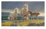 Golden Glory Prints by Nancy Glazier