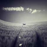 Mulane Photographic Print by Luis Beltran