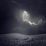 Zootz Fotografie-Druck von Luis Beltran