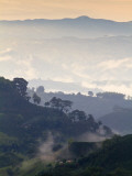 Colombia, Caldas, Manizales, Chinchina, Coffee Plantation at Hacienda De Guayabal at Dawn Photographic Print by Jane Sweeney
