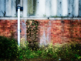 Side of Derelict Buidling with Drainpipe Photographic Print by Clive Nolan