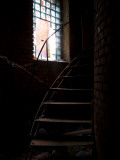 Spiral Staircase Photographic Print by Nathan Wright