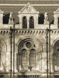 Natural History Museum, Exhibition Road, South Kensington, London, England Photographic Print by Jon Arnold