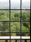 View Through Old Window Panes Photographic Print by Felipe Rodriguez