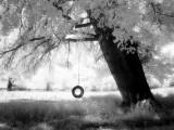 Aiveo Fotografie-Druck von Craig Satterlee