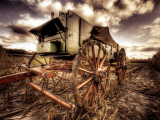 Harvest Photographic Print by Stephen Arens