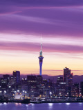 City Skyline / Night View, Auckland, North Island, New Zealand Photographic Print by Steve Vidler