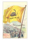Rattlesnake Flag Posters