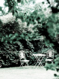 Abandoned Garden Photographic Print by David Ridley