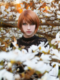 The White Spring Photographic Print by Josefine Jonsson